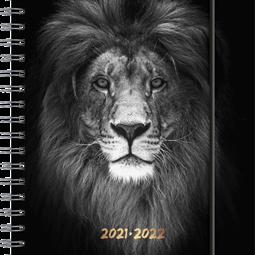 Skolalmanackor - Kalender Lion A6